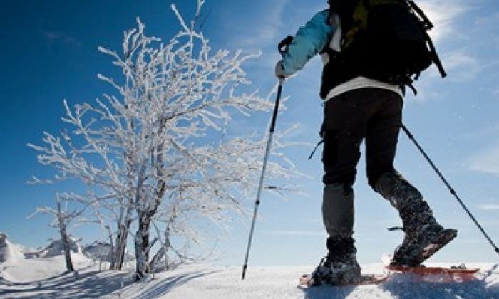 Excursió raquetes de neu