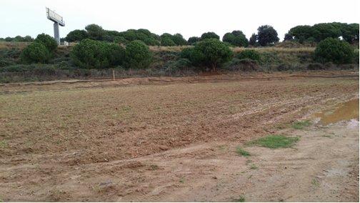 La finca de les Cinc Sènies que surt a concurs. Foto: Ajuntament de Mataró
