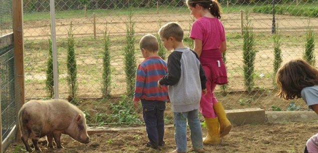 Uns nens, a la granja escola Casa Nostra. Foto: Arxiu.