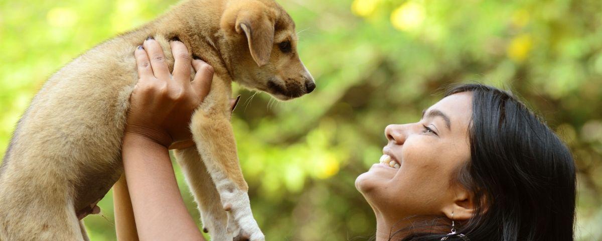 El gos es converteix en un membre de la família