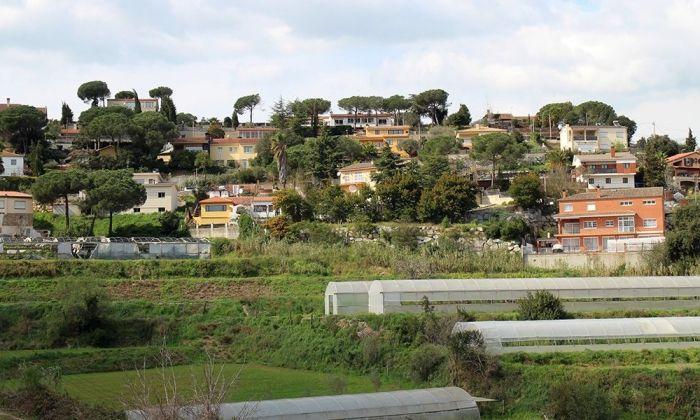 Les Ginesteres. Foto: Ajuntament d'Argentona