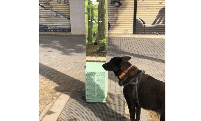 L'urinari instal·lat a la plaça Assemblea de Catalunya. Foto: Ajuntament
