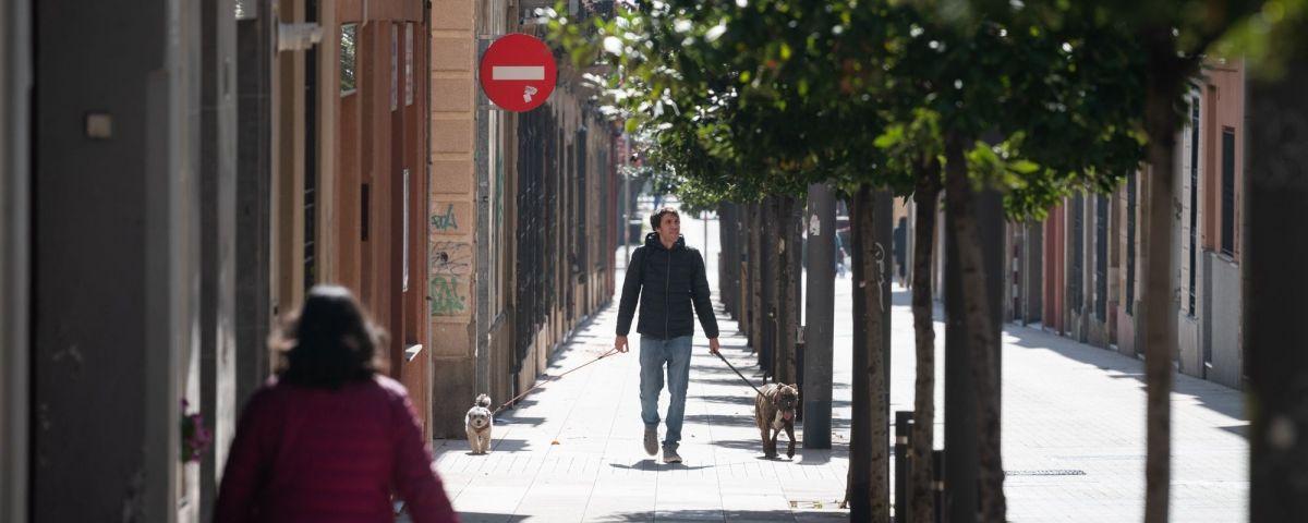 Passejant un gos per Mataró durant el confinament. Foto: R.Gallofré